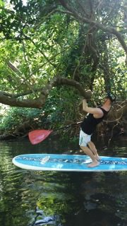 Dodging Trees - Stand Up Paddleboard Tour